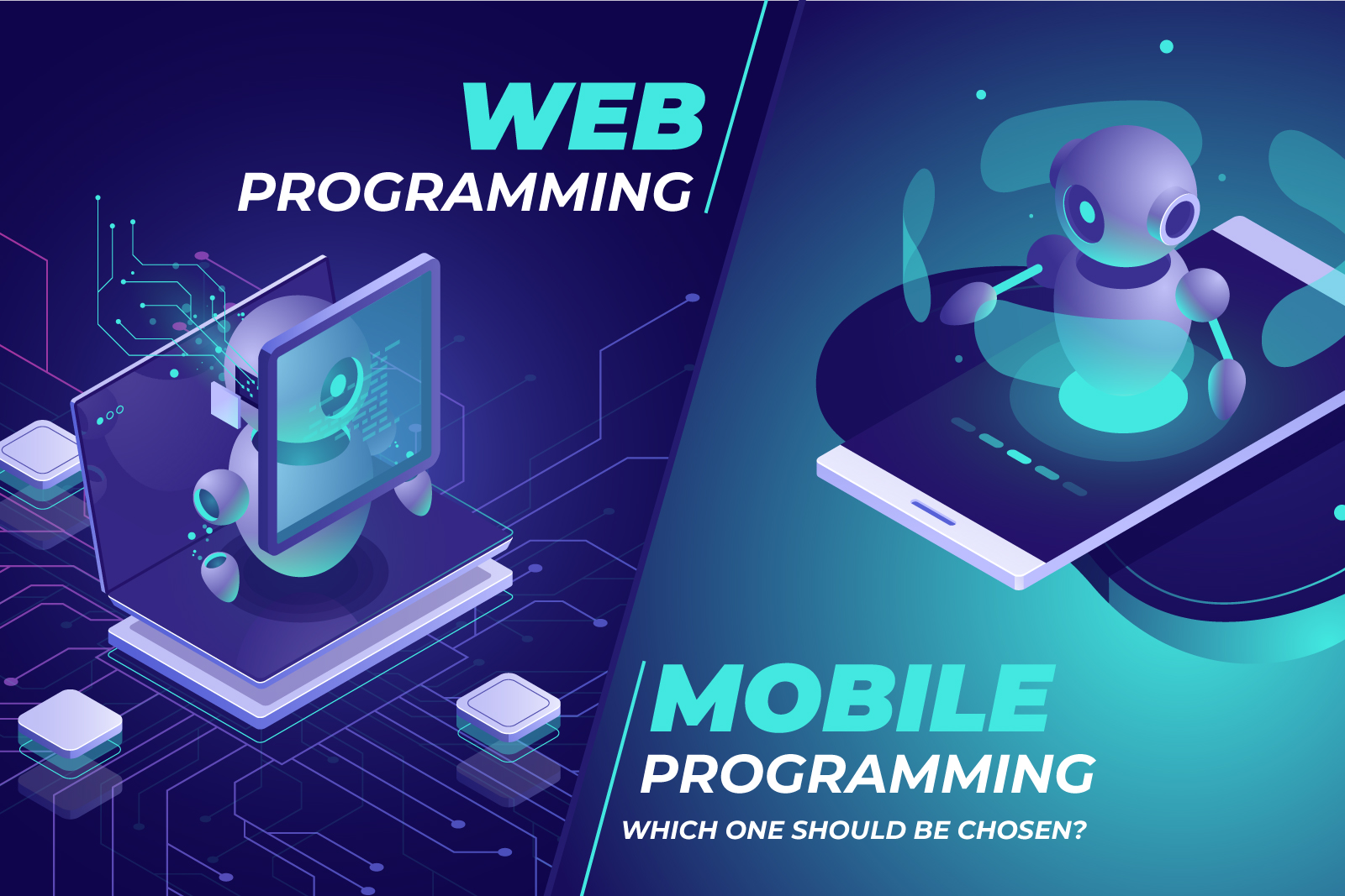 Mobile programming or web programming: Which one should be chosen?