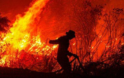Trí tuệ nhân tạo (AI) có thể giúp dự đoán các vụ cháy rừng quy mô lớn