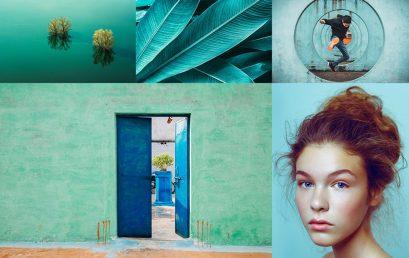 Xu hướng màu sắc trong thiết kế năm2020: Đậm và táo bạo hơn