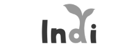 Indi Game